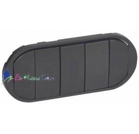 Manette interrupteur, va et vient ou poussoir 5 commandes compactes Céliane graphite Legrand 067905