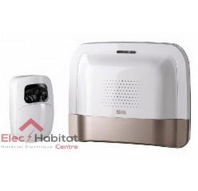 Pack transmetteur domotique IP/GSM détecteur vidéo PACK TYDOM VIDEO Delta Dore 6410173
