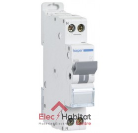 Disjoncteur Ph+N 10A à vis Hager MFN710