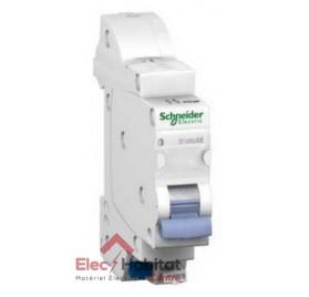 Disjoncteur Ph+N 106A automatique D'clic XE embrochable Schneider 16726